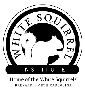 White Squirrel Institute