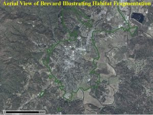 topo map of brevard