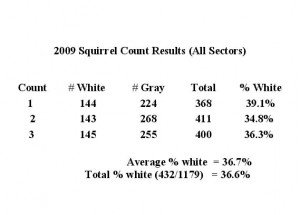 white squirrel count chart